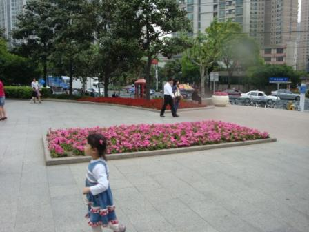 In China 232